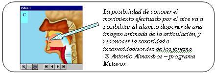 Esquema explicativo de los órganos fono-articuladores que participan en la emisión vocálica. Imagen del programa Metavox versión 2.0