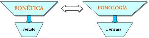 Como vemos en el esquema mientras la fonética estudia el sonido la fonología hace lo propio con el fonema