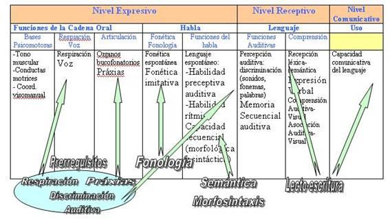 Se muestra el esquema de las funciones referidas a los niveles del lenguaje: expresivo, receptivo y comunicativo, así como la incidencia que sobre ellos lleva a cabo el tratamiento logopédico